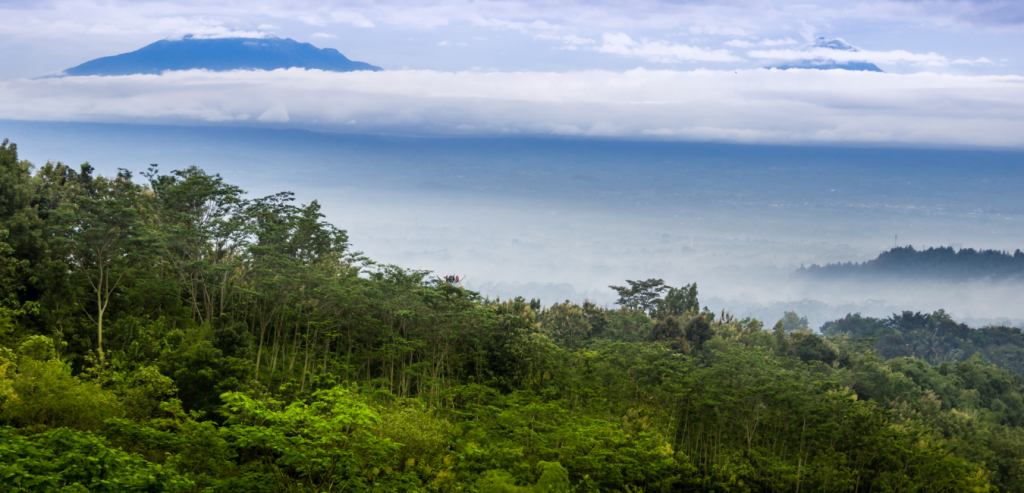 Praktik Pendanaan Konservasi Sektor Kehutanan Dalam Tata Kelola Lingkungan Pedesaan